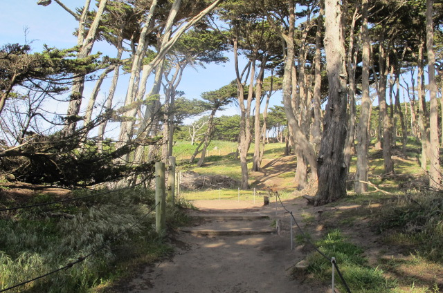 The walking trail at Sutro Bath