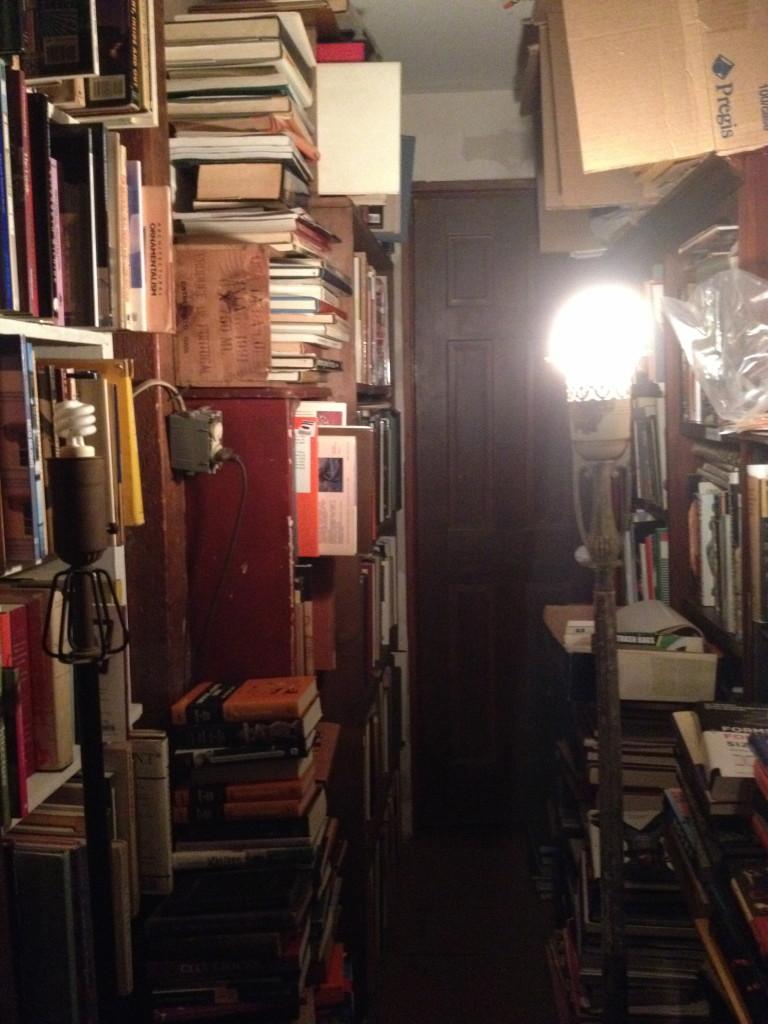 Dauphine Street Books inside